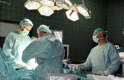 transplantacija1